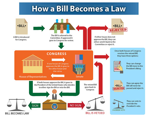 Diagram of how a bill becomes a law in congress explore schematic i m just a bill effective legislative advocacy starts with the basics rh apse org diagram how a bill becomes a law in the philippines congress how a bill ccuart Choice Image