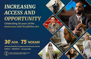 NDEAM 2020 Poster in English.